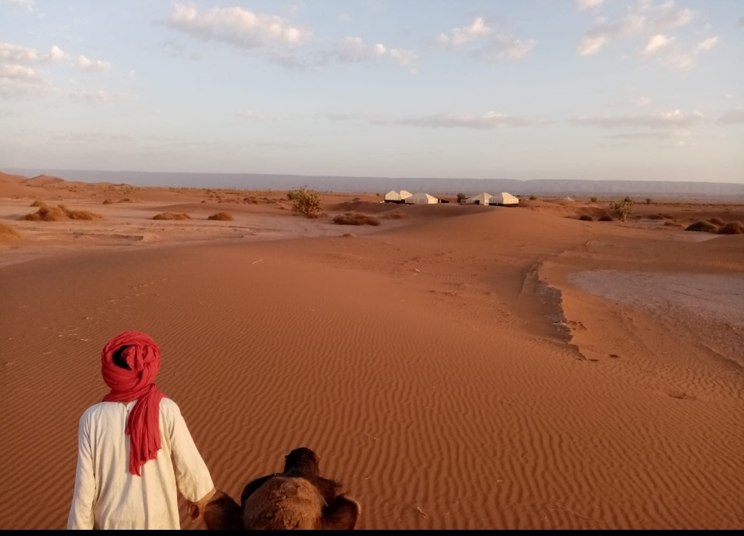 Chamelier avec son dromadaire marchant en direction du bivouac dans le désert