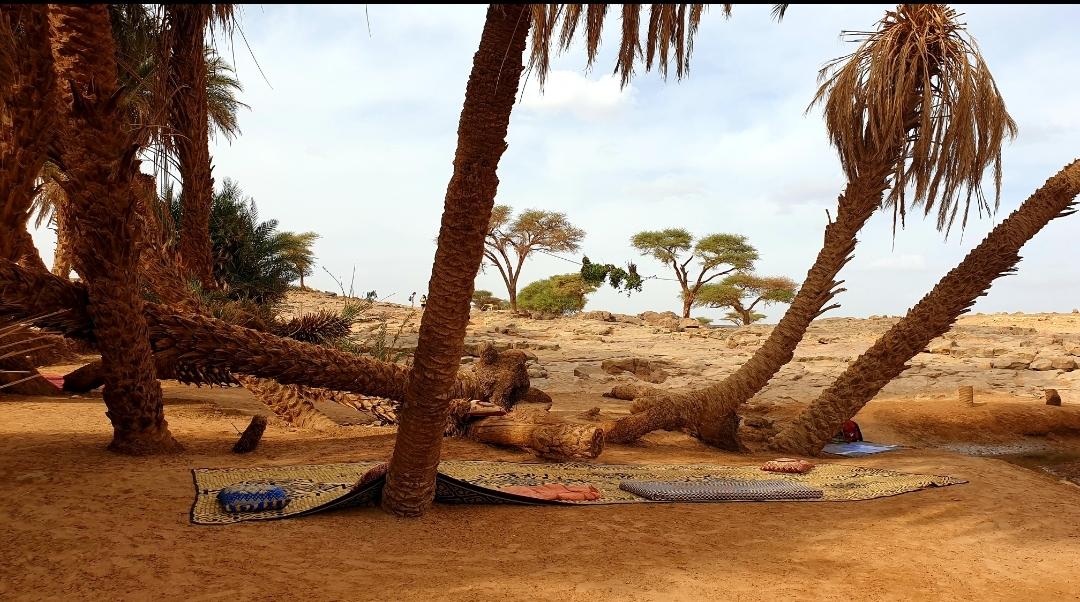 tapis Marocain espace détente dans l'Oasis