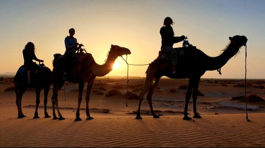 3 personnes sur des dromadaires au lever du soleil